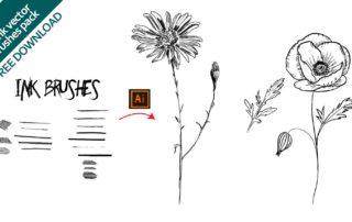 Illustrazioni con effetto china vettoriali realizzate in Adobe Illustrator